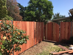 Fence and Gate 3