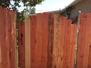 Fence and Gate 4