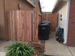 Fense and Gate (4)